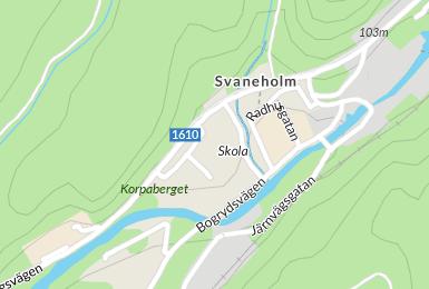 Rasmus Wellsten, Vipgrnd 3, Svaneholm | unam.net