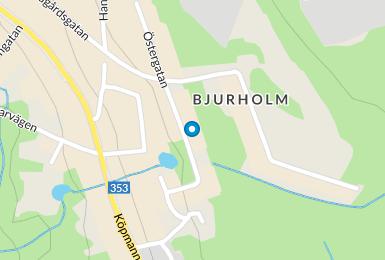 bjurholm träffa singlar