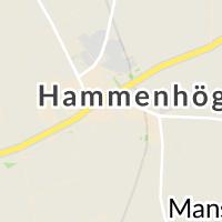 Solängskolan, Hammenhög