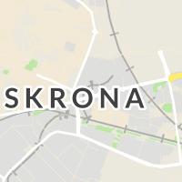 Kronans Apotek, Landskrona