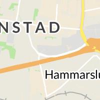 HORNBACH Bygg- och trädgårdsmarknad, Kristianstad