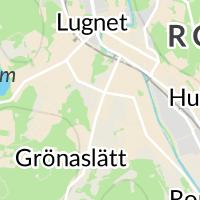 Kulturförening, Ronneby