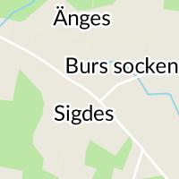 Ryggakuten Burs, Stånga