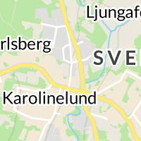 Svenljunga Kommun, Svenljunga