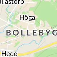 Bollebygds Kommun, Bollebygd