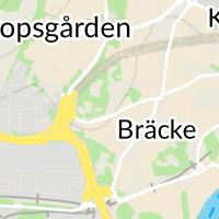 Hunddagiset TriBus, Göteborg