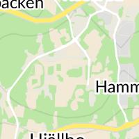 Apoteket Hammarkullen, Angered