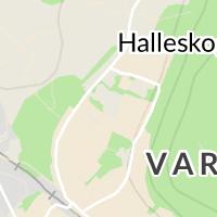 Hallevi Idrottsplats, Vargön