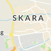 Petersburg, Skara