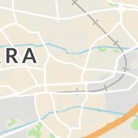 Skara Kommun, Skara