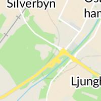 Lidköpings Kommun, Lidköping