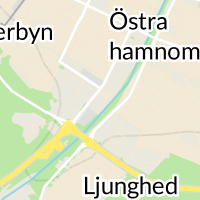 Lidköpingsnytt.nu, Lidköping