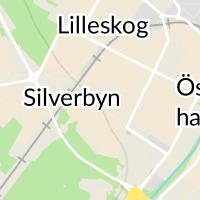 Örslösa skola, Lidköping