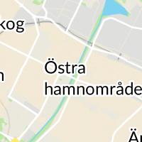 Praktikertjänst  - Örnen Tandvård AB, Lidköping
