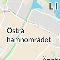 Överförmyndare, Lidköping