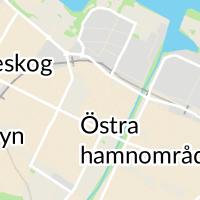 Seniorcenter, Lidköping