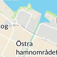 Bleeker Thor Hudläkare, Lidköping
