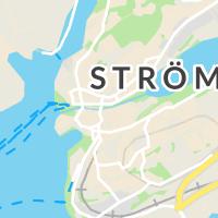 Chattis Blommor AB, Strömstad