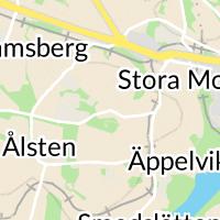 Abrahamsbergs Bollplan, Bromma