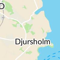 Djursholms Slott, Djursholm