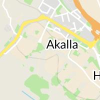 Akallaskolan, Kista