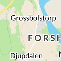 Grossbolshallen Forshaga, Forshaga