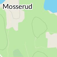 Älvsbacka Kyrka, Molkom