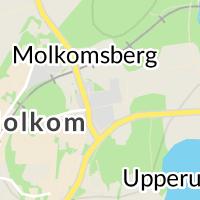 Socialförvaltning, Molkom