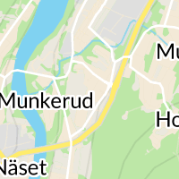 Munkfors kommun, Munkfors