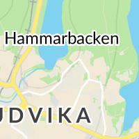 Ludvika Kommun - Daglig Verksamhet, Ludvika