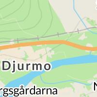 Gagnefs Kommun, Djurmo