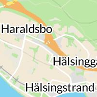 Sto Scandinavia AB, Umeå