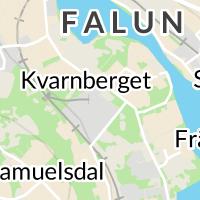 Veteranpoolen Dalarna, Falun