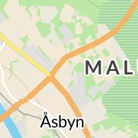 Malung-Sälens Kommun, Malung