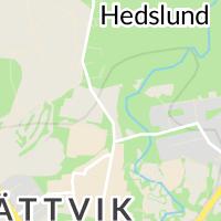 Rättviks Kommun, Rättvik
