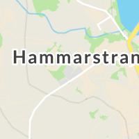Moderna Försäkringar, Fil Till Tryg Forsikring A/S Danmark, Hammarstrand