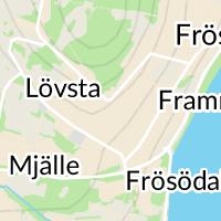 Henvålens Fjällgård AB, Frösön