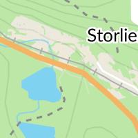 Tullverket, Storlien