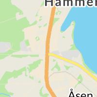Hemvård Hemtjänst Färdtjänst, Hammerdal