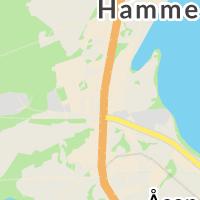 Swedbank, Hammerdal