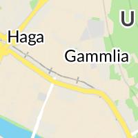 Kommunrehab, Umeå