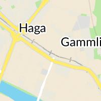 Holmen Skog AB, Umeå