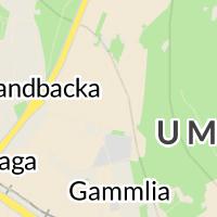 Tenton Gym ÖK, Umeå