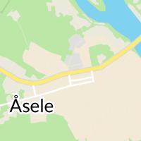 Åsele Centralskola SFI, Åsele
