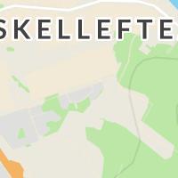 Holmen Skog  - Region Nord, Skellefteå AB, Skellefteå