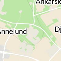 Piteå Kommun, Piteå